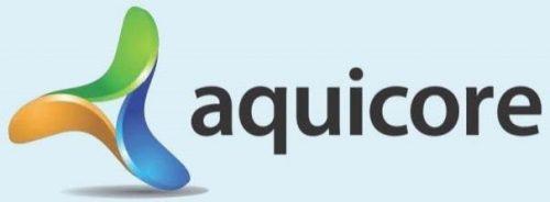 Sorin Capital Funds - Aquicore